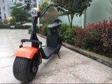 Cer 1000W und RoHS Aproved elektrischer Roller mit Removeable Lithium-Batterie