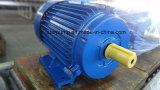 Ferro di serie di Y che lancia standard a tre fasi di IEC del motore elettrico