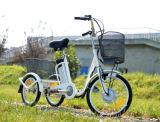 Bici elettrica Trike elettrico della rotella calda di vendita 3 da vendere