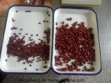 Feijões vermelhos salpicados vermelhos e vermelhos enlatados para comer