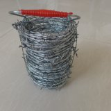 Колючая проволока PVC покрынная/электрическая гальванизированная