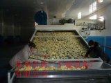 Еда серии Dw непрерывные и сушильщик конвейерной овоща