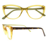 Het Optische Frame van Eyewear van het Oog van de kat en Optische Glazen met Uitstekende kwaliteit