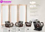 Popular de haute qualité Salon Miroir Chaise Salon président Barber (de P2008F)