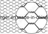 Горяч-Окунутое гальванизированное шестиугольное плетение провода