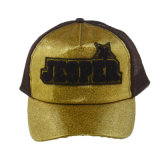Vário chapéu feito sob encomenda do camionista do Snapback dos painéis da cor 5 com bordado