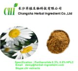Fornecer 100% Natural Feverfew Extrair Parthenolide 0,3%, 0,8% HPLC