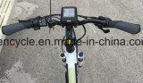 """"""" elektrisches Fahrrad-Fahrrad des fetten Gummireifen-26 mit verstecktem Stadt-Fahrrad der Batterie-E (SY-E2624)"""