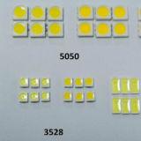 변하기 쉬워 색깔 5050RGB/120LEDs ETL 110/220V 가로등 2 년 보장