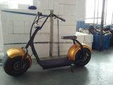 Un nuovo motorino elettrico dei 2016 Cochi minori della città con il motorino elettrico della gomma grassa