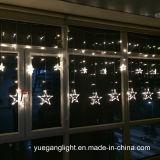 Het hete Verkopende LEIDENE 2m138LEDs Van uitstekende kwaliteit Licht van het Gordijn met Grote Ster 12