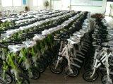 Bicicleta plegable de la sola velocidad de la aleación de aluminio