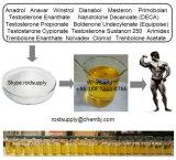 Testoterone superiore all'ingrosso Enanthate della polvere dell'ormone di steroidi del rifornimento USP