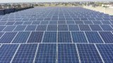 Comitato solare policristallino, pile solari e modulo 300W