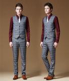 Пальто серой шотландки 3 частей официально задыхается костюм людей