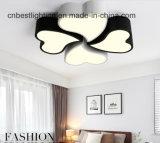 Lumières modernes de DEL de plafonniers de vente en gros acrylique d'usine