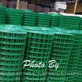 1 / 2''x1 / 2 '' Green PVC recubierto Valla suppiler alambre soldado del panel de malla