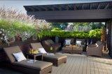 Decking al aire libre compuesto plástico de madera respetuoso del medio ambiente
