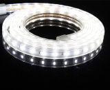 singola illuminazione di striscia di riga SMD5630 LED di 60LEDs/M