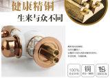 Faucet cerâmico chinês da bacia do projeto novo (Zf-604)
