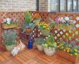 屋外のための良質の庭の柵そしてArmrest