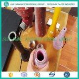 Generi di parti di ceramica per il pulitore della polpa