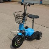 3つの車輪の障害があるのための電気自転車のハブモーター移動性のスクーター