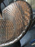 Insiemi esterni della barra del giardino del rattan (TG-6007)