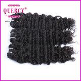 Trama Curly brasileira do cabelo da onda do Virgin 2016 não processado cru o mais popular
