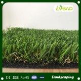 Ландшафт с лужайкой искусственной травы безводной