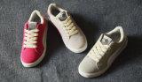 Nieuwe Producten van het Runnen van de Schoenen van Sporten