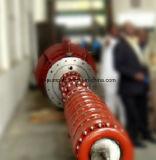 Bomba de água de vários estágios vertical da série