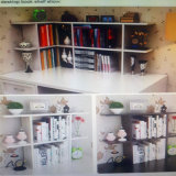 Form Modernhot Büro-Möbel-Ausgangsmöbel-füllender Schrank-Bücherschrank
