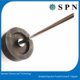 Magnete di plastica del ferrito per gli apparecchi elettrici