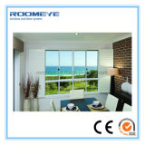 Double Windows guichet de glissement en aluminium en aluminium glacé de Roomeye