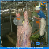 Ce Cattle Halal Slaughtering Line avec Abattoir Machines