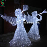 Christmas esterno Decoration Lights con il LED Angel