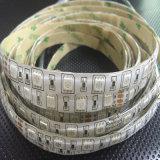 Striscia flessibile LED RGB della fabbrica 12V/24V 5050 della striscia di Shenzhen LED