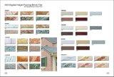 Mattonelle della parete del mattone di rivestimento del getto di inchiostro di HD Digitahi Tile/Exterior