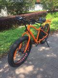 Bici elettrica 500W 48V di sport della bicicletta della montagna della gomma grassa americana di stile 26inch