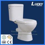 De p-Val van de bevordering het Sanitaire Tweedelige Toilet van Waren