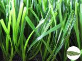 Synthetisch/Kunstmatig Gras met Tt