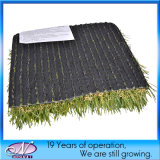 Tipo poco costoso dell'erba che modific il terrenoare il tappeto erboso sintetico artificiale della moquette dell'erba