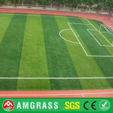 Künstliches Turf für Futsal Cheap Sports Turf Football Artificial Grass