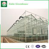 Serra galvanizzata di vetro della struttura d'acciaio