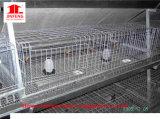 高品質の鋼鉄家禽は中国からの養鶏場装置を収納する
