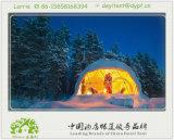 リゾートのための贅沢なドームのテント/円形のテント/球形のテント