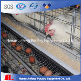 un type cage de pose de poulet d'oeufs pour le matériel de ferme avicole