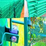Pvc bedekte 3D Omheining van het Comité van het Netwerk die voor de Omheining van de Tuin wordt gebruikt met een laag