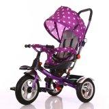 Trainings-Räder und Stahlrahmen-Material-Kinder Bicicle Dreirad (OKM-731)